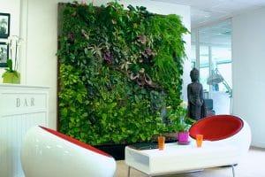 un mur végétal intérieur