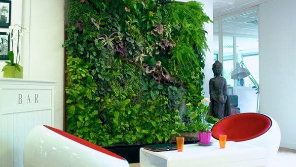 Comment faire un mur végétal intérieur soi-même?