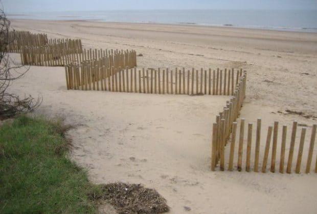 ganivelles au bord d une dune