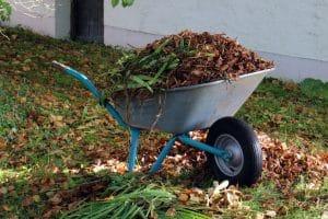 déchets végétaux à éliminer avec broyeur végétaux