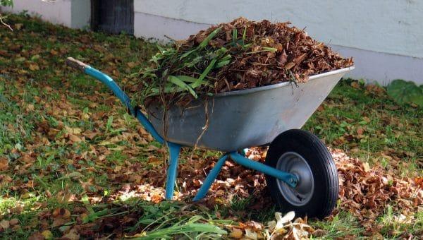 Les avantages d'un broyeur de végétaux