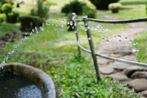 arroser jardin avec eau de pluie