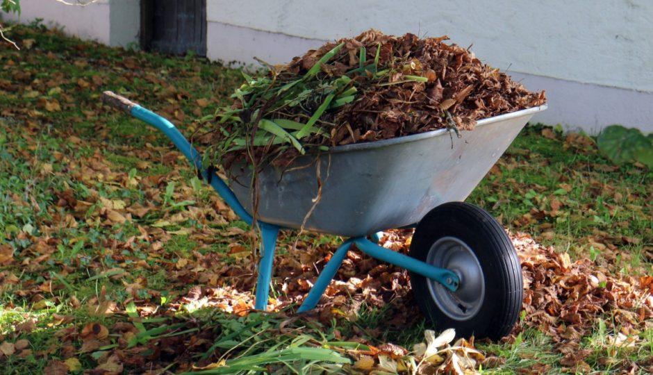 bien préparer le sol de son jardin bio